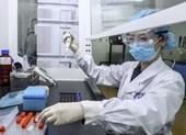 Giám đốc điều hành TQ thử nghiệm trước vaccine COVID-19