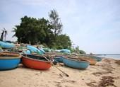 Quảng Ngãi mong FLC tạo điều kiện tham quan dự án Quy Nhơn