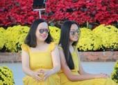 Trẩy hội trên đường hoa tết hơn 6 tỉ đồng ở Đà Nẵng