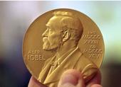 Nobel Y học năm 2021 vinh danh khám phá mở đường phát triển thuốc giảm đau