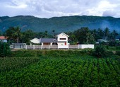 Độc đáo ngôi nhà con xây cho cha mẹ già ở Bình Định