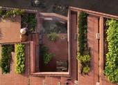 Mê mẩn với thiết kế vườn rau 7 bậc thang trên mái nhà