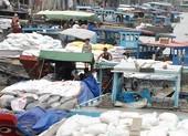 Xuất khẩu gạo: Cần công khai, minh bạch, bình đẳng