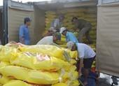 Nhiều vướng mắc về xuất khẩu gạo được tháo gỡ