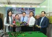 Hoa hậu Phan Thị Mơ nói về du lịch miền Tây