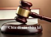 Bị mẹ kiện ra tòa, con trai phản tố đòi chia thừa kế