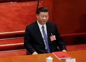Ông Tập: Trung Quốc sẵn sàng đẩy mạnh hợp tác vaccine COVID-19