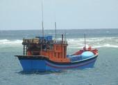 Cà Mau: 5 ngư dân khống chế thuyền trưởng buộc tàu quay vào bờ