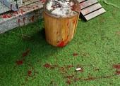 Một gia đình đang hoang mang vì bị tạt sơn, mắm tôm