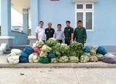 Người dân Tây Ninh gửi quà cho bộ đội biên phòng mùa COVID-19