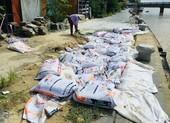 Kè bảo vệ phố cổ Hội An hơn 135 tỉ bị sụt lún