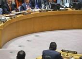 Mỹ đòi trục xuất đại sứ Venezuela tại Liên Hiệp Quốc