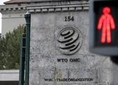 WTO hoãn mọi cuộc họp trong 10 ngày vì dịch COVID-19