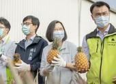 Đài Loan tuyên bố kiện Trung Quốc ra WTO vụ cấm nhập khẩu trái cây
