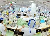 COVID-19: Đề xuất gói 20.000 tỉ 'cứu' hàng triệu lao động