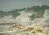Việt Nam đoạt giải nhất cuộc thi ảnh về thời tiết và khí hậu