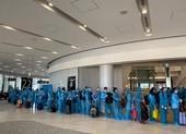 Hơn 340 công dân Việt Nam từ Nhật Bản về nước