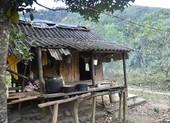 Nhiều người ở miền núi Quảng Bình vào rừng trốn dịch COVID-19