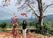 Đi tìm mùa hoa gạo bỏ quên ở núi rừng Quảng Nam