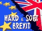 EU không nên tiếp tục trì hoãn Brexit