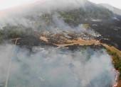 Rừng mưa Amazon cháy kinh hoàng, lỗi do tổng thống Brazil?