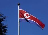 LHQ: Triều Tiên tiếp tục vi phạm trừng phạt trong năm 2019