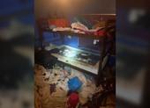 Tìm thấy ba đứa trẻ trong ngôi nhà ngập rác cùng 245 con vật