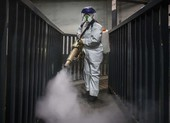 COVID-19 Mỹ: 21 ca chết 534 ca nhiễm, ông Trump lên tiếng