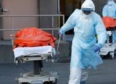 COVID-19 Mỹ: 8.444 ca chết, 310.233 ca nhiễm, kinh tế chịu đòn