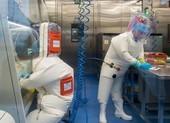 Viện Virus Vũ Hán nghiên cứu chủng Corona mới từ năm 2018?