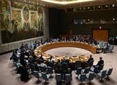 Mỹ-Trung tranh cãi tên WHO trong nghị quyết ngừng bắn toàn cầu