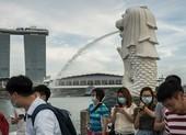 Sai lầm biến Singapore từ hình mẫu thành ổ dịch COVID-19