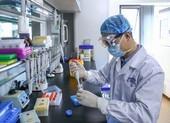 Thiếu người thử vaccine, hãng dược Trung Quốc phải sang UAE