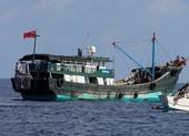 6 tàu cá Trung Quốc bị Malaysia bắt cách bờ chỉ hơn 2 hải lý