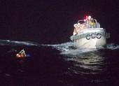 Tàu chở 5.800 con bò chìm ở biển Hoa Đông, 42 người mất tích