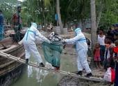 Siêu bão mạnh nhất hàng thập kỷ tàn phá Ấn Độ, Bangladesh
