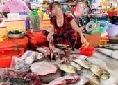 Sẽ xử lý tiểu thương ngang nhiên bán rùa xanh giữa chợ