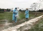 Xuất hiện 34 ổ dịch cúm gia cầm trên cả nước