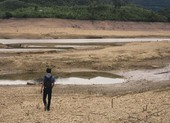 Nguy cơ mất mùa vì hạn hán ở miền Trung