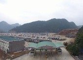 Thiết lập luồng xanh ưu tiên xuất khẩu tại cửa khẩu VN-TQ