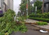 Áp thấp nhiệt đới có thể đi vào biển Đông, mạnh lên thành bão