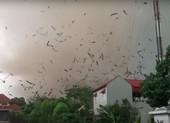 Vĩnh Phúc: Lốc xoáy làm 3 người chết, nhiều người bị thương