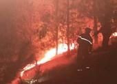 Thắp hương gây ra vụ cháy rừng dữ dội