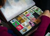 Người phụ nữ hơn 50 năm sưu tầm tem về 12 con giáp - ảnh 2