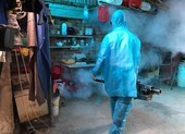 TP.HCM xử phạt hơn 1.000 trường hợp cố tình 'nuôi' lăng quăng