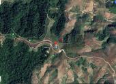 Bộ trưởng: Bản đồ về rừng trên GoogleMaps là chính xác