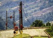 Nhìn lại lưới điện nông thôn theo nghị quyết của Quốc hội