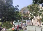 Điện lực TP.HCM nói về vụ trạm điện nổ ở quận 3
