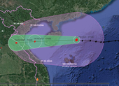 Bão số 8 giật cấp 14 đang cách quần đảo Hoàng Sa 260 km