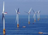Bộ Công Thương đề xuất kéo dài cơ chế giá điện gió cố định